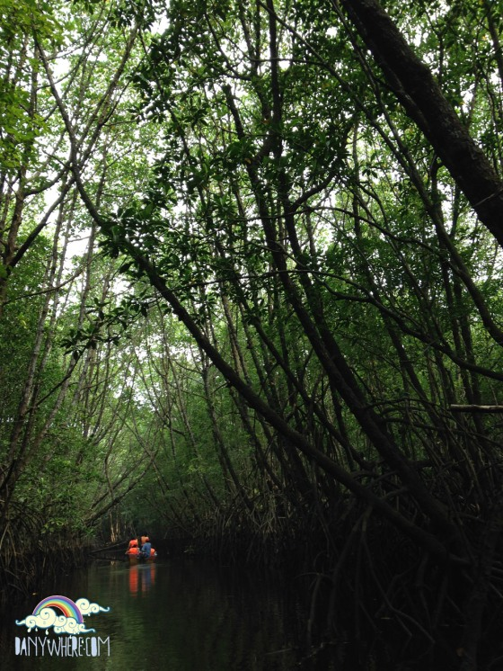 Cherating Mangrove Cruise